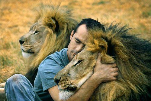 man hugs lion and it 39 s pretty much what we wish we were all doing. Black Bedroom Furniture Sets. Home Design Ideas