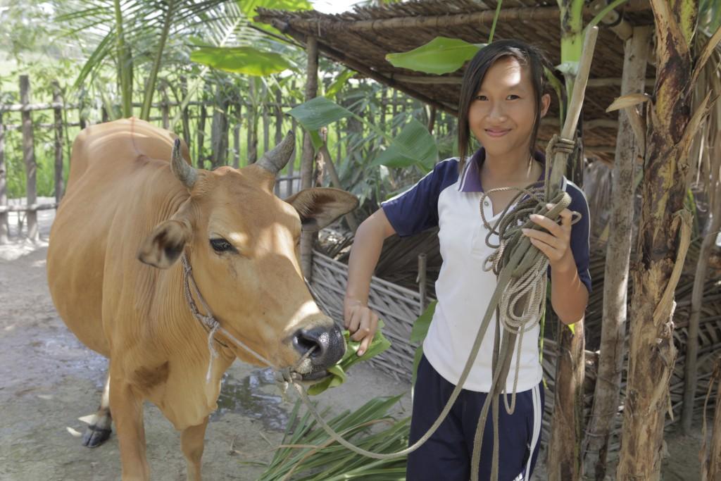 malnutrition and heifer international Got milk the impact of heifer international's livestock donation programs in rwanda svetlana pimkina1 rosemary rawlins1.