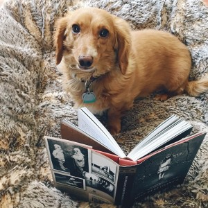 Kami Garcia's dog Oz poses with Miss Peregrine's Home for Particular Children.