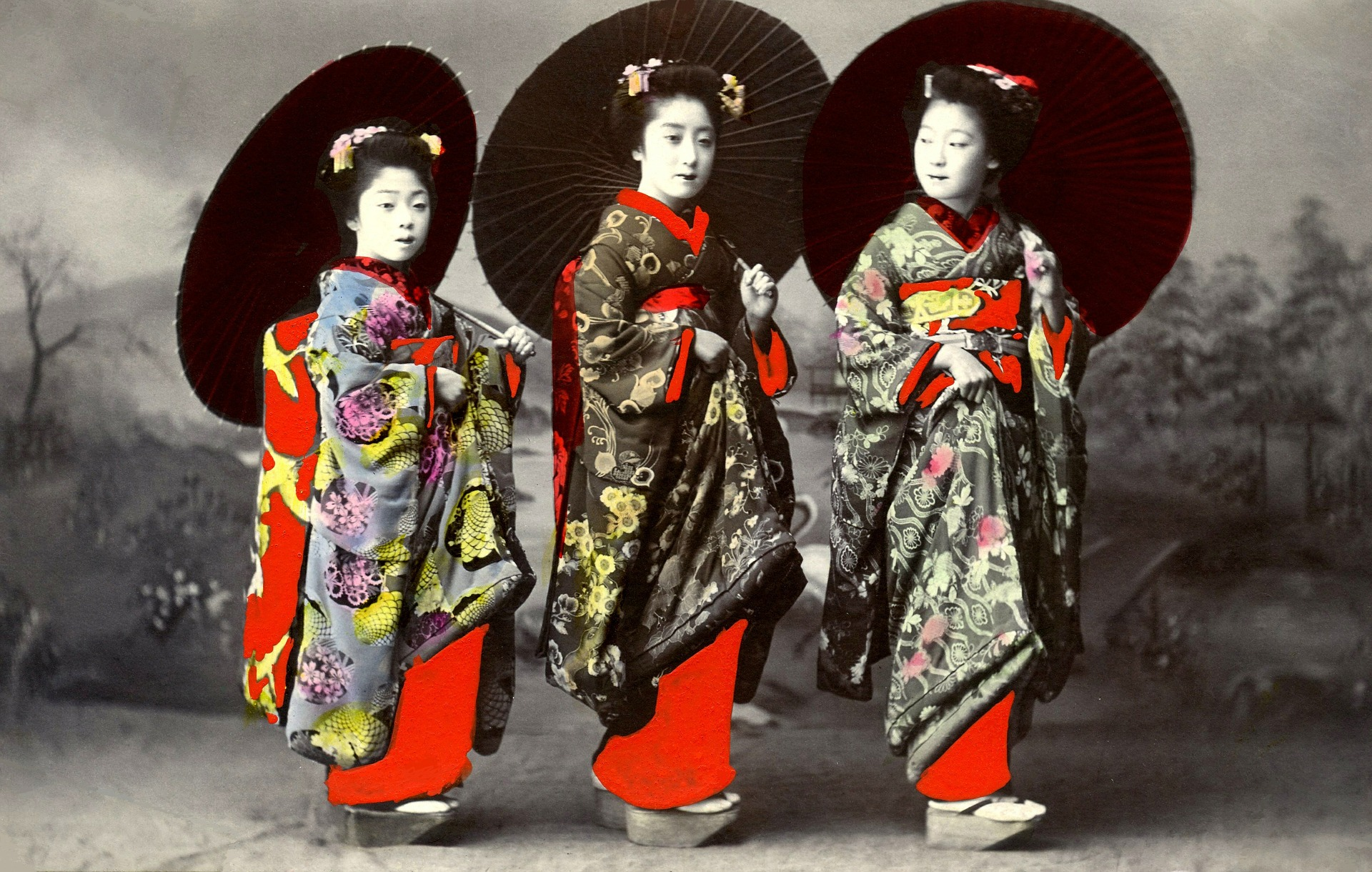 The Flower And Willow World Recognizing Historical And Modern Geisha