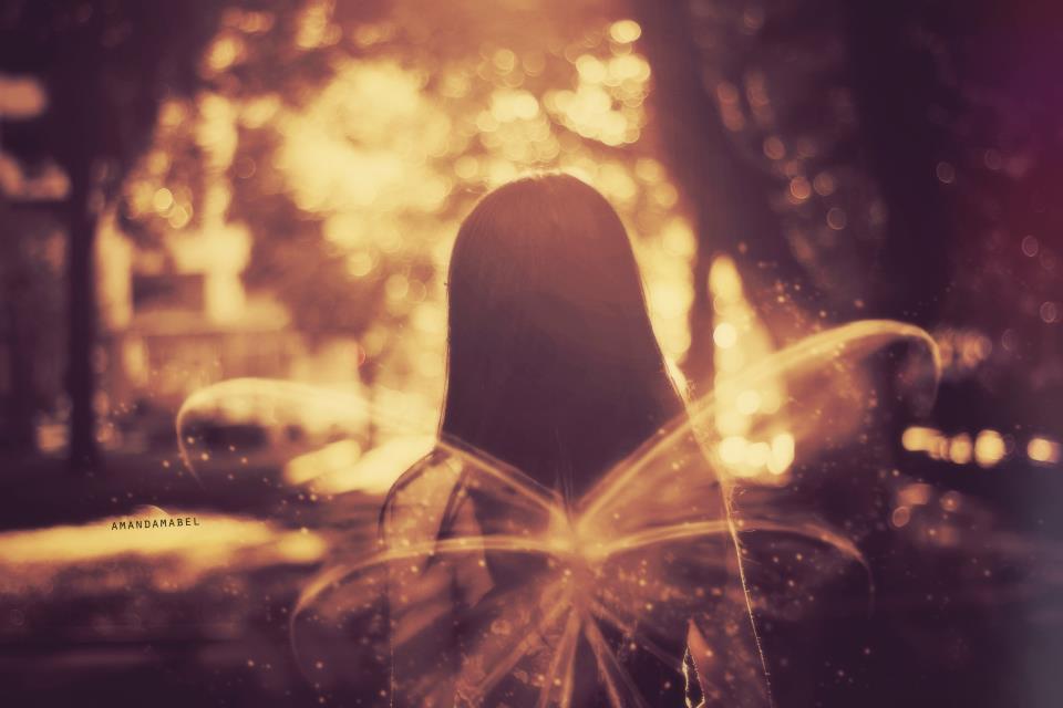 amanda mabel fairy